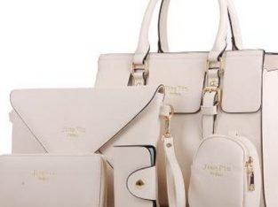 5 in 1 handbag set