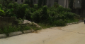RESIDENTIAL PLOT OF LAND FOR SALE IN PORT HARCOURT
